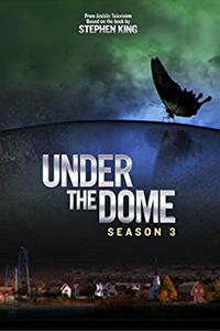Een (bijna) perfect einde voor Under the Dome