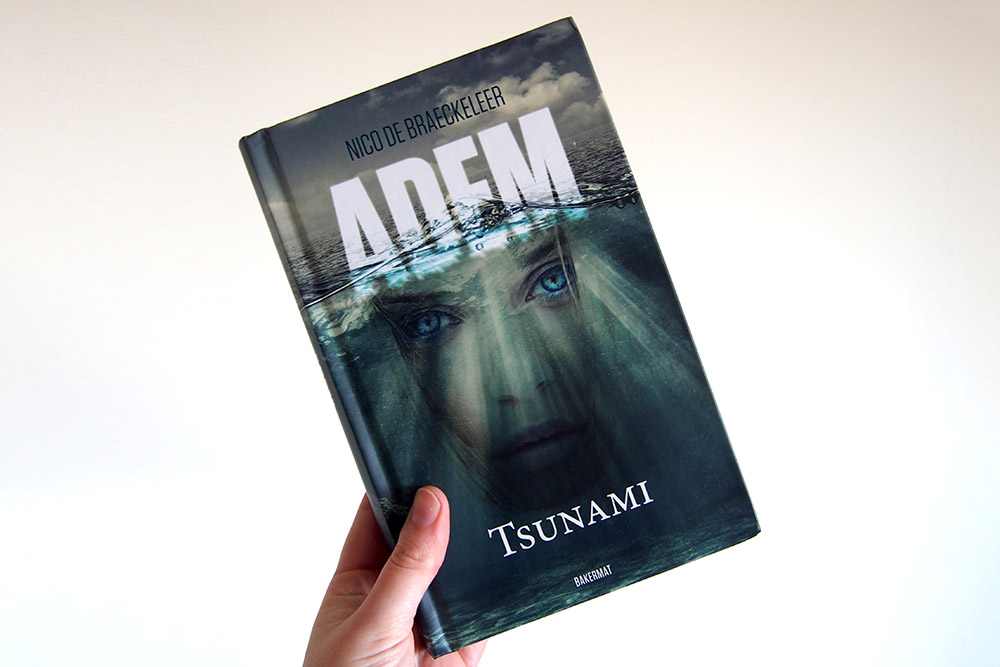 Tsunami - Nico De Braeckeleer