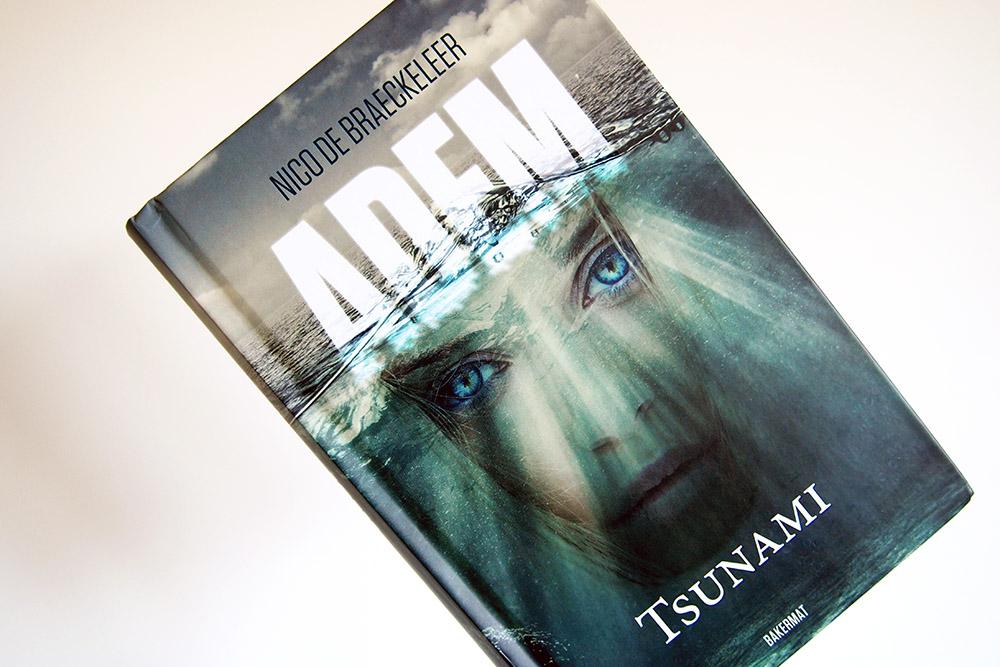 Tsunami: de pijnlijke gevolgen van klimaatverandering | Blogtour